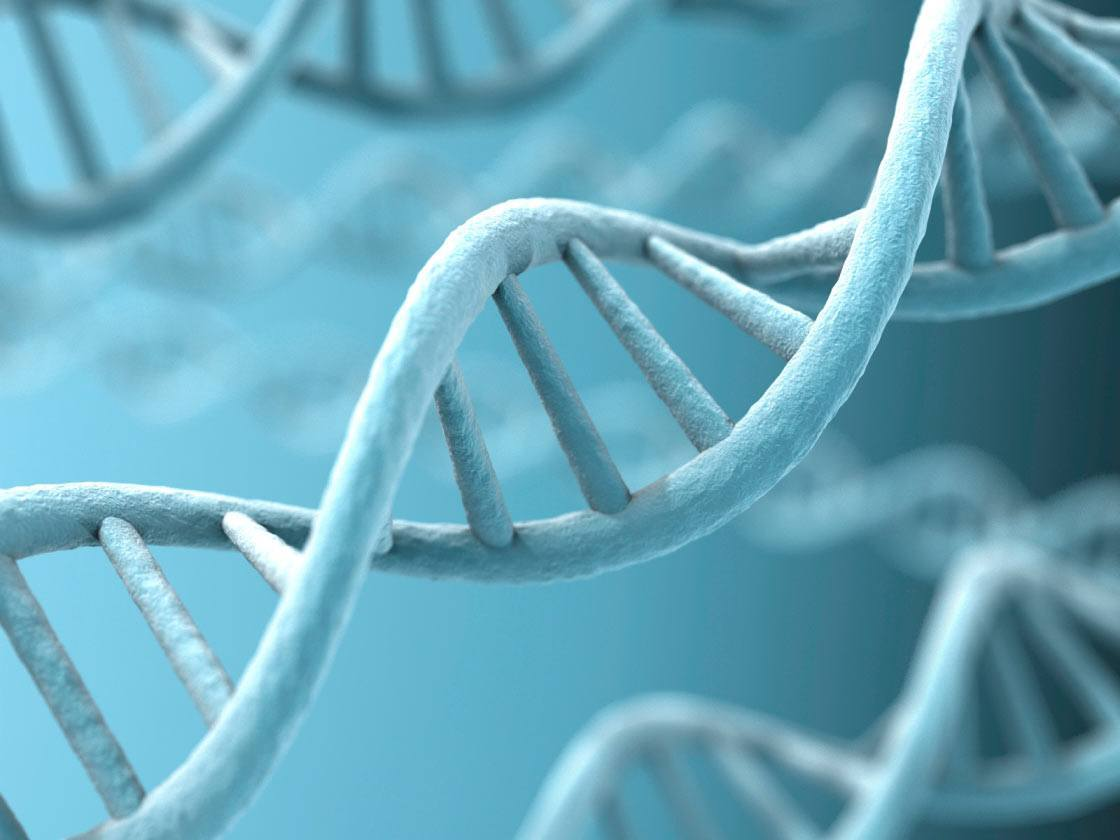How Genes Affect Acne And How To Mitigate The Damage