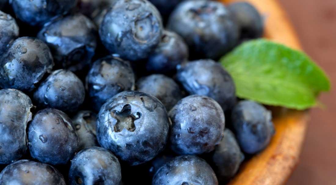 Beautiful photo of antioxidant rich blueberries