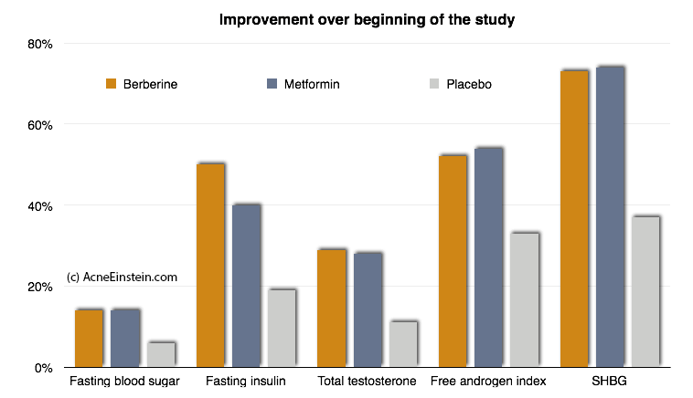 Effect of berberry supplements on acne hormones