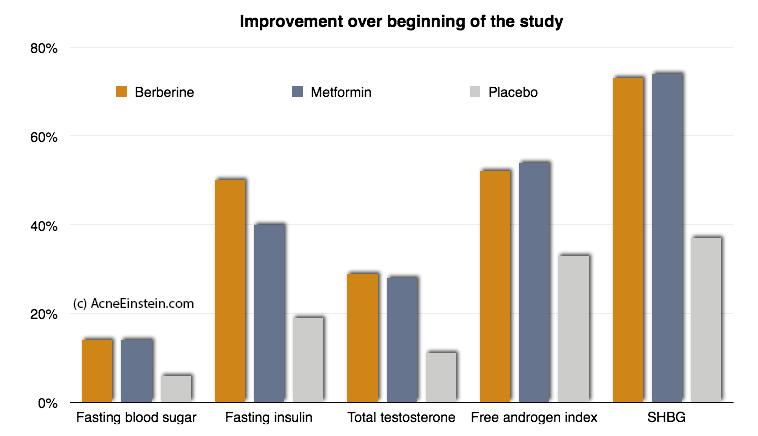 effect-berberine-hormones